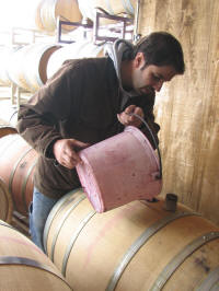 Anthony Nappa Winemaker